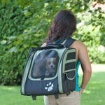 A look at the Pet Gear I-GO2
