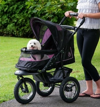 A review of the Pet Gear NV Pet Stroller