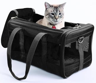 A look at the Sherpa Pet Carrier