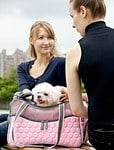 Argo by Teafco Petagon Airline Approved Pet Carrier