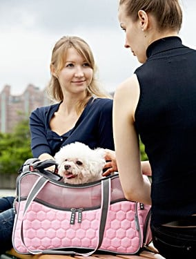 Argo by Teafco Petagon Airline Approved Pet Carrier.  Pink Dog Carriers should be stylish and functional