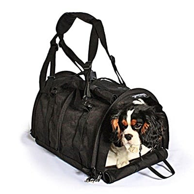 Review of the SturdiBag
