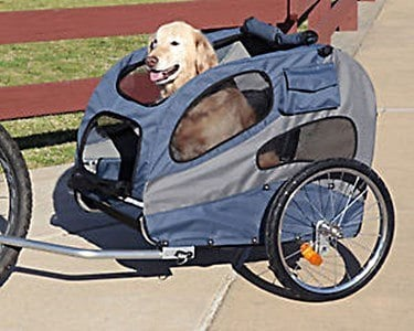 Best Bicycle Dog Carrier