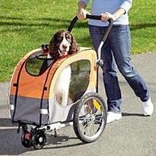 Best Dog Strollers for Medium Dogs