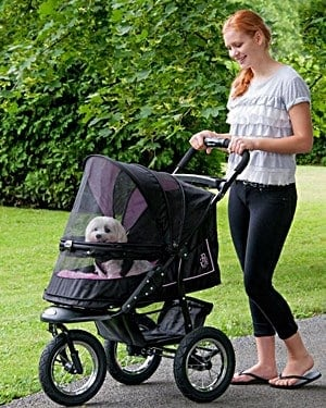 Pet Strollers for Small Dogs
