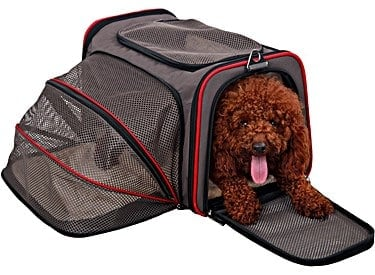 petsfit travel carrier