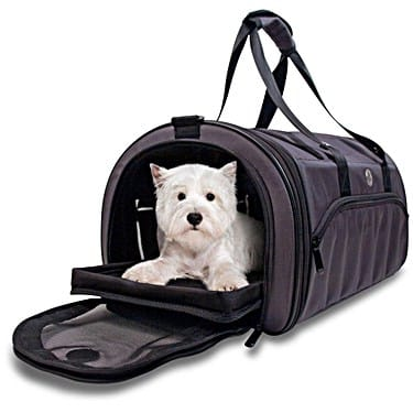 Best Dog Carriers for Older Dogs