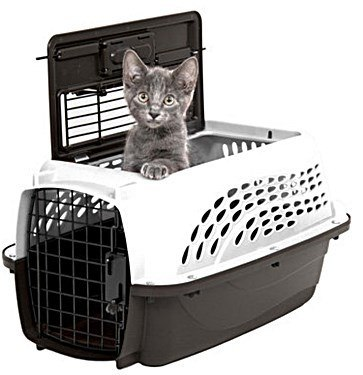 Pet Carrier with a Top Door