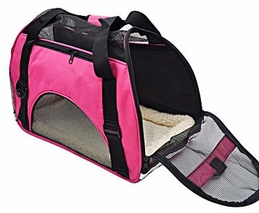 What Are the Best Pet Carriers for Dogs up to 30 lbs?