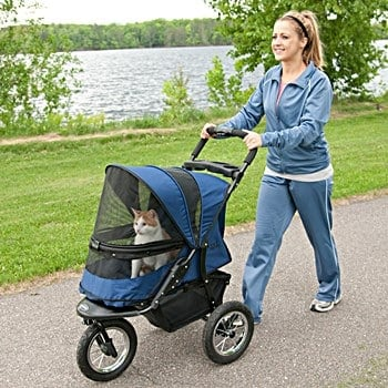 Quality Pet Strollers for Cats