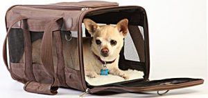 Best Small Dog Carry-on Bags for Domestic and International Travel