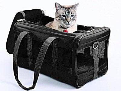 Best Cat Carrier Large Cat