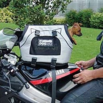 motorcycle-pet-carrier-for-small-dogs