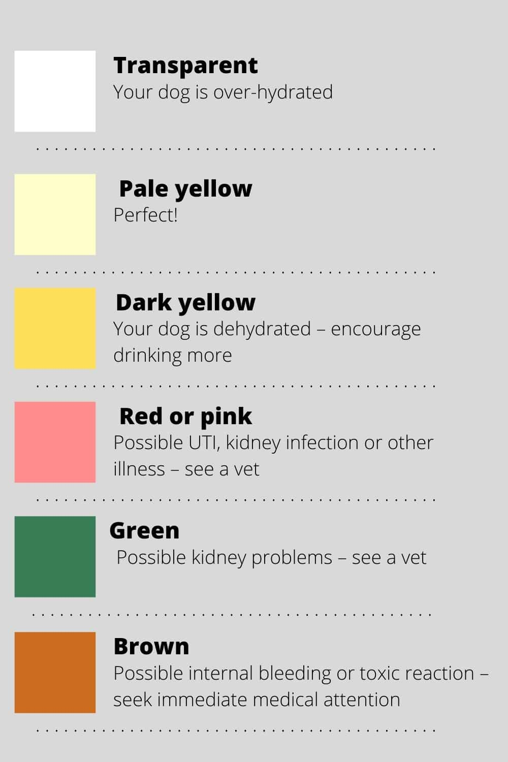 dog urine color chart