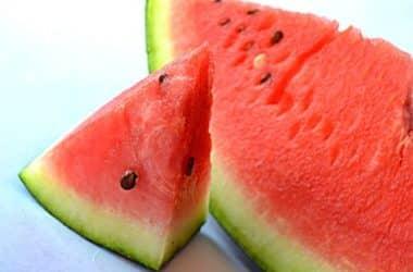 my dog ate watermelon seeds