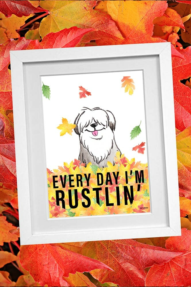 """Framed cartoon of shaggy dog standing in yellow and orange fall leaves with """"Every Day I'm Rustilin"""" Printed."""