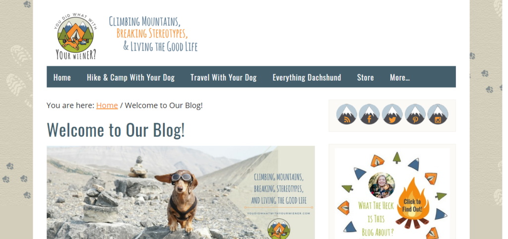 Best Blogs For Dachshund Owners You Did That With Your Weiner
