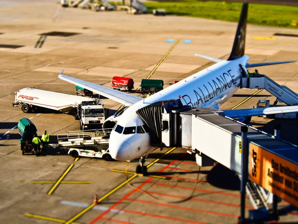Airlines and Pet Carriers
