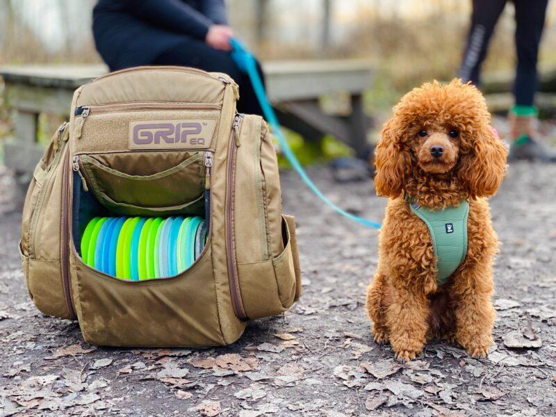 Best Pet Carriers