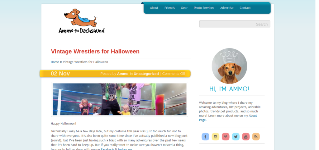 Best Blogs For Dachshund Owners Ammo the Dachshund
