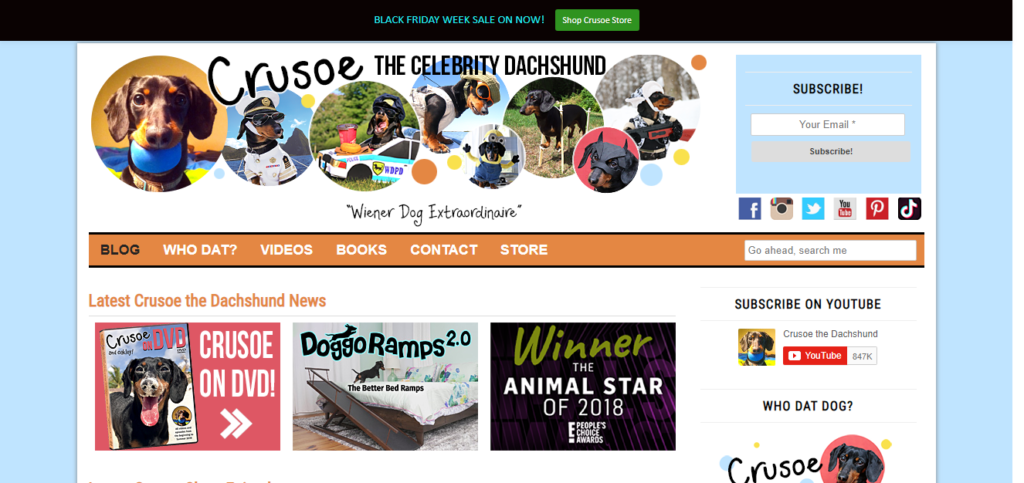 Best Blogs For Dachshund owners Crusoe the Celebrity Dachshund