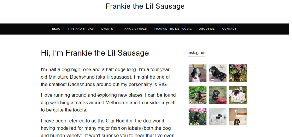 Best Blogs for Dachshund Owners Frankie the Lil Sausage