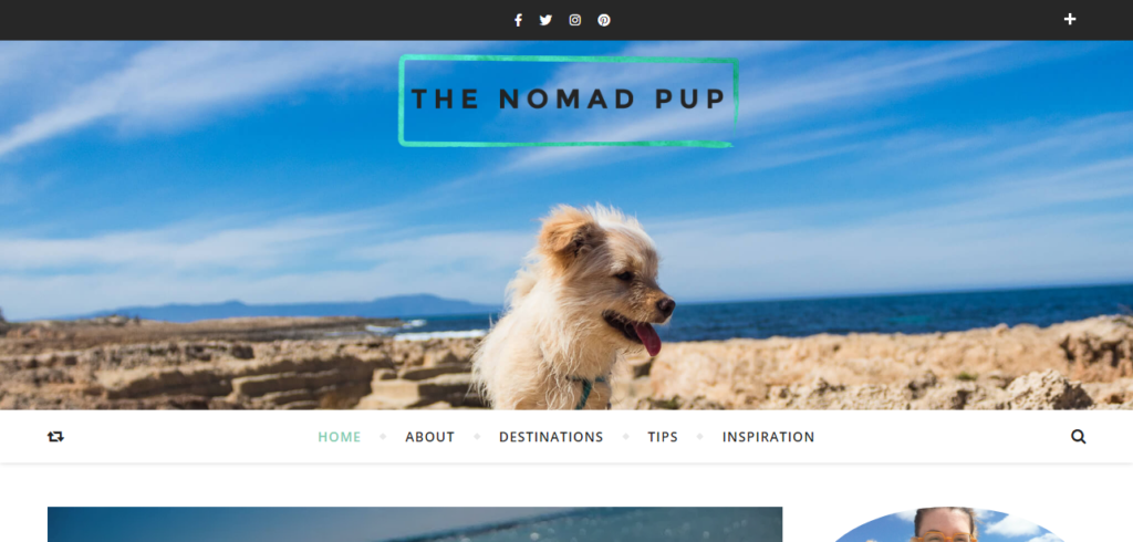 The Nomad Pup Blog