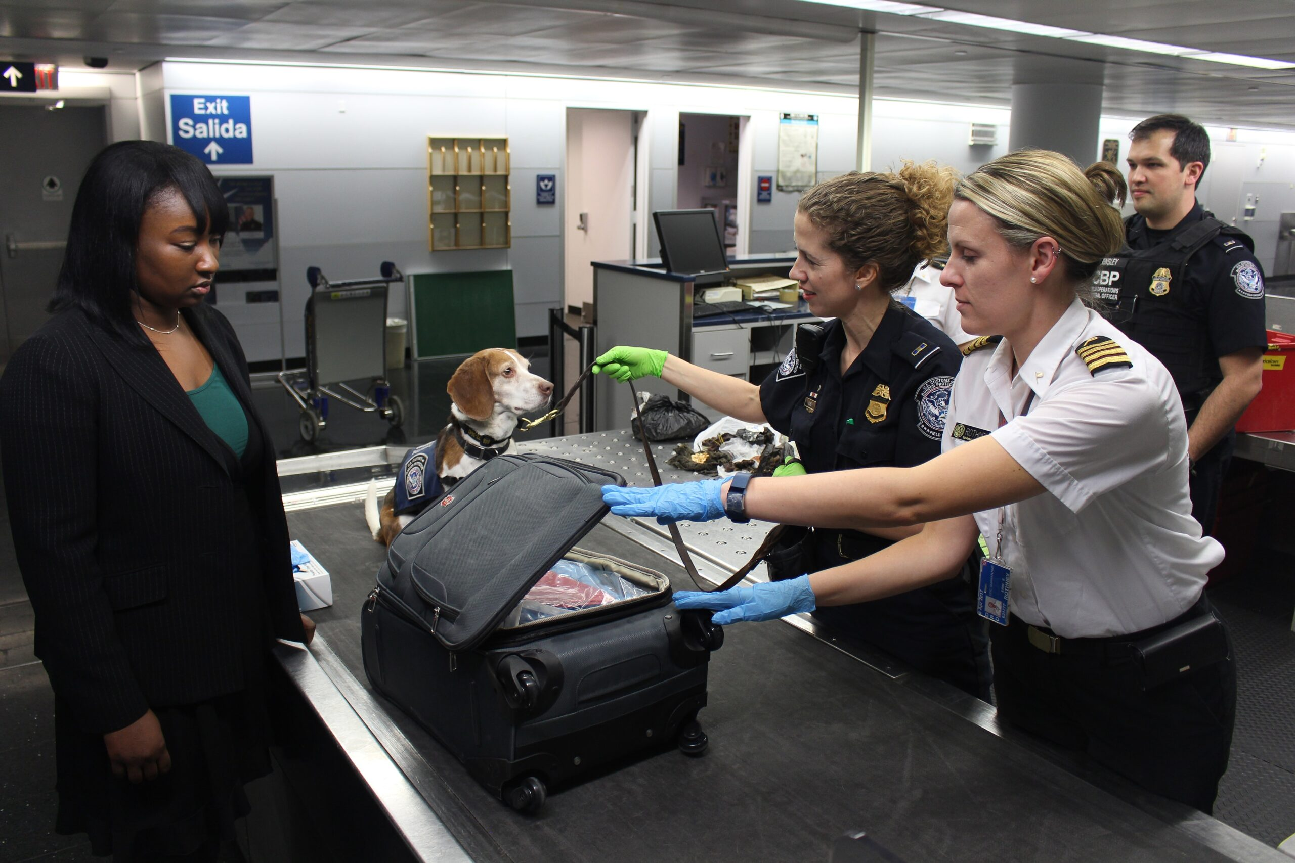 Strict Airlines Checking the Pet Carrier Luggage